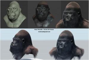 Trabajo en progreso: primate en 3D